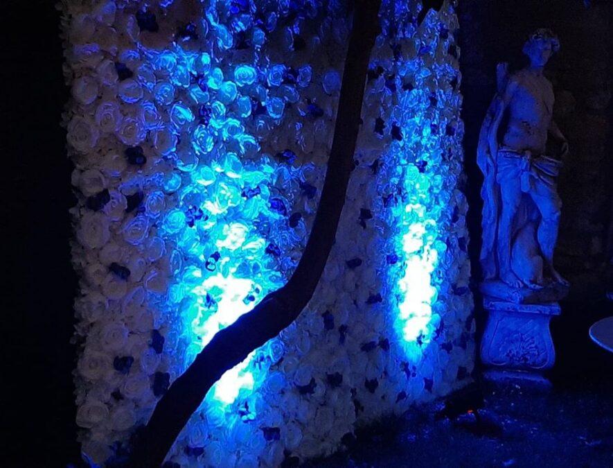Jeu Lumière Bleu