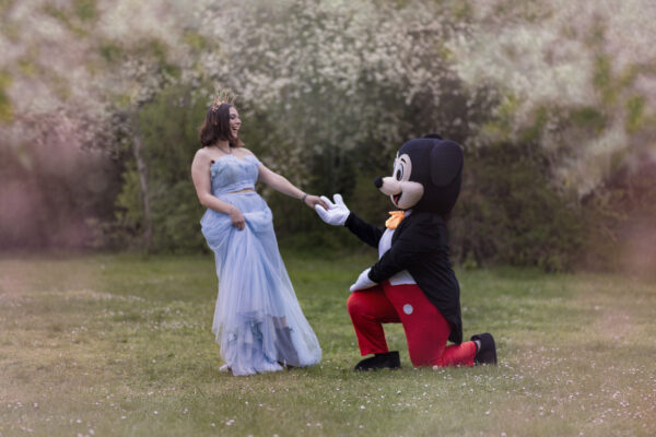 Mickey et princesse