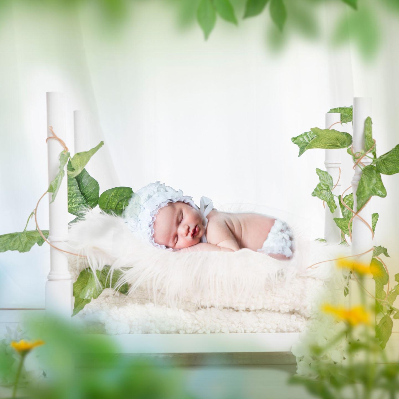 photo naissance par Naouel Lefki